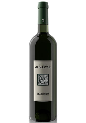 Chardonnay 2016 | Witte Wijn | Italië