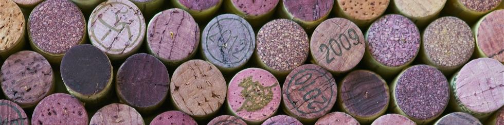 Wijneducatie bij Vin Munnen